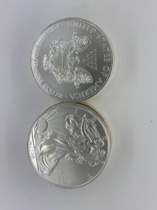 (10) UC 2010 American Eagle Silver Coins