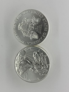(10) UC 2014 American Eagle Silver Coins